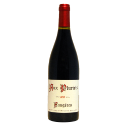 Aux pluriels by Jeff Carrel AOP Faugères rouge