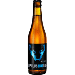 Bière Lupulus Hopera